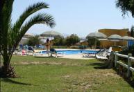 Alojamiento guanaqueros for Camping jardin de las dunas